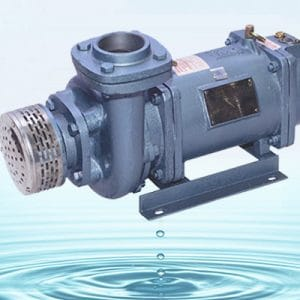 IS: 9283 Motor for Submersible Pump Sets