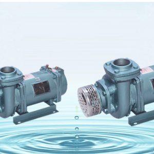 Submersible Motors for Submersible Pump Sets