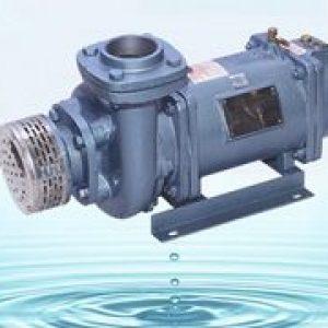 horizontal monoset pump india