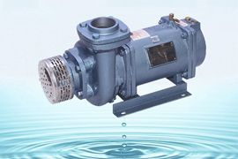 horizontal monoset pump india